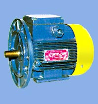 AIR Series Three-Phase Asynchronous Motors (shaft height 132, 160 and 180) IM2081 (combined)