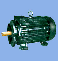 MT Series Crane Motors